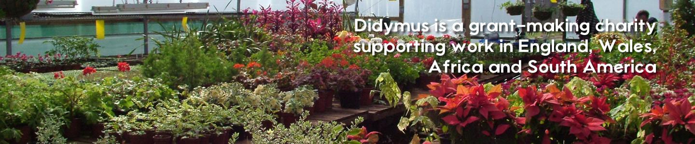Didymus Charity